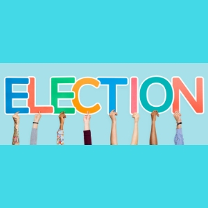 Council of Governors Election Results 2018