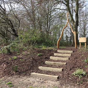 Hospital's new landscaped woods dedicated to long-serving volunteer