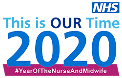 Year of the nurse and midwife logo